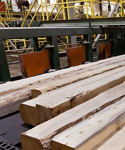 sawmill2_crop